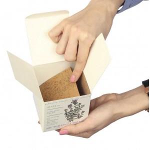 Graines à l'intérieur de la bougie parfumée Kobo Candles Plant the Box