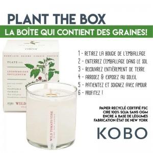 Conseil d'utilisation pour planter les graines de la bougie Kobo Candles Plant the Box
