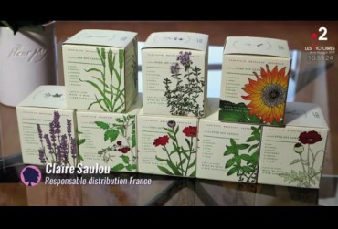 Jolie graine de bougie - France 2 et Kobo Candles